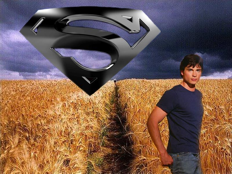 Clark Kent In The Field Wallpaper 800x600