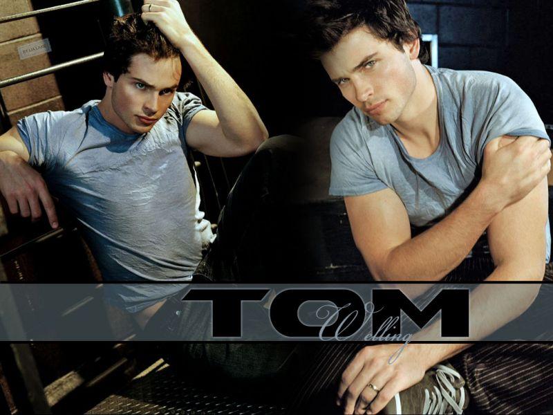 Tom Welling Gray Shirt Portrait Wallpaper 800x600